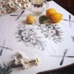 dekor-skaterti